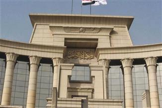 نائب رئيس المحكمة الدستورية يكشف محاور اجتماع القاهرة للمجالس الدستورية الإفريقية