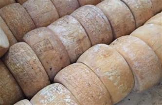 ضبط 5 أطنان جبن رومي غير صالحة للاستهلاك في حملات بالدقهلية | صور