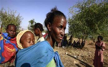 الأمم المتحدة تتهم حكومة إثيوبيا بتجويع مئات الآلاف من موطنيها بسبب الصراع في تجراي