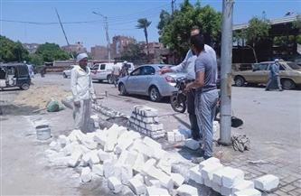 تطوير وتجميل ميدان المحطة في «أبوتيج».. وحملات نظافة بـ«الشارع الجديد»|صور