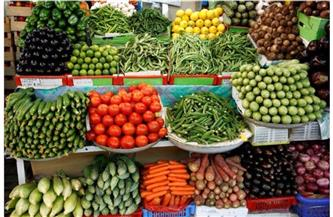 انخفاض الخيار.. أسعار الخضراوات اليوم الجمعة 11 يونيو 2021