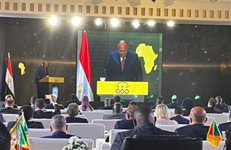 «شكري» يؤكد حرص مصر المتواصل في إطار الشراكة مستهدفة مشروع التضامن الإفريقي