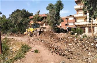رفع تراكمات القمامة ونواتج الهدم بقرية كفر أبو الحسن في قويسنا| صور