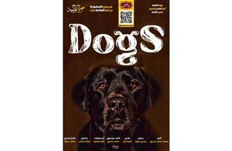 متميزو الدفعة الثانية من «ابدأ حلمك» في عرض «dogs».. غدا