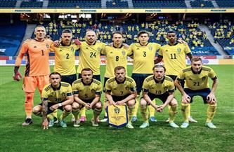 الاتحاد السويدي يقدم بلاغًا للشرطة بعد الهجوم على «بيرج»