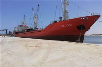 تداول 20 سفينة حاويات وبضائع عامة وتصدير 3100 طن ملح إلى لبنان عبر ميناء العريش | صور