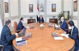 الرئيس السيسي يتابع عددا من المشروعات القومية التابعة لوزارة الزراعة