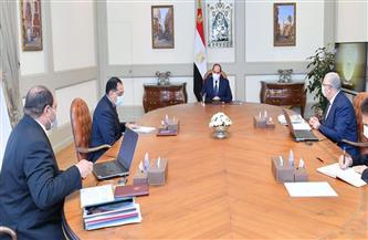 """الرئيس السيسي يوجه بتعزيز جهود تطوير محطة """"الزهراء"""" للخيول"""