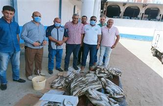 ضبط 68 طن سمك مجمد فاسد فى البحيرة |صور
