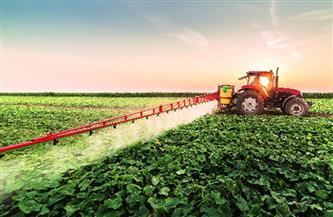 برلماني: ما تحقق من نهضة بقطاع الزراعة طوال 7 سنوات يدعو للفخر