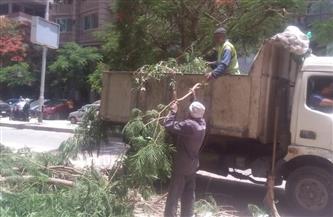 حي العجوزة يشن حملات نظافة وإشغالات بالشوارع والميادين   صور