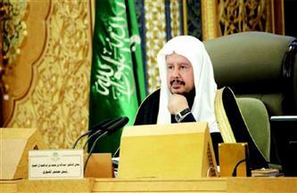 رئيس «الشورى السعودي»: قرار قصر الحج على المواطنين والمقيمين دفعٌ للضرر وحمايةٌ للنفس
