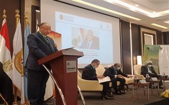 خالد عبدالعال: نعمل على تعزيز علاقة القاهرة بمنظمات إفريقيا