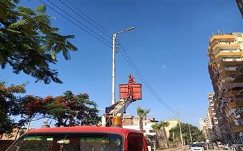 رفع كفاءة الإنارة في مدينة طلخا بالدقهلية