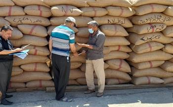 الزراعة تكثف الزيارات الميدانية على محطات التقاوي في محافظة الفيوم   صور