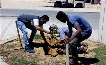 الانتهاء من زراعة الأشجار المثمرة بقرية الغربنيات بالإسكندرية   صور