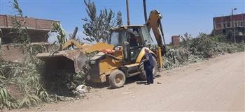 حملة لرفع تراكمات القمامة والأتربة بمدينة أشمون بالمنوفية | صور