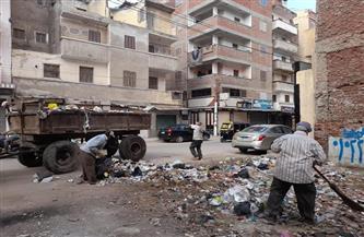 تكثيف جهود جهاز النظافة بأحياء مدينة دسوق لرفع مخلفات القمامة من الشوارع   صور 