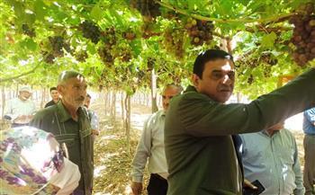 مدير زراعة المنوفية يتفقد عددًا من المزارع بمركز السادات لمتابعة سير العمل |صور
