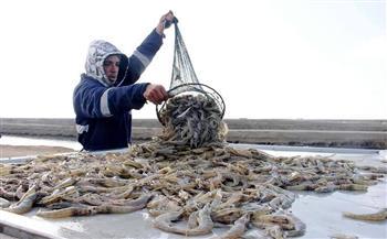 قناة السويس وغليون والفيروز.. مشروعات الاستزراع السمكي تفرض واقعًا جديدًا بالأسواق