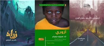 """أدب جنوب إفريقيا وقصص محمد البرمي في برنامج """"كلمات"""" على النيل الثقافية"""