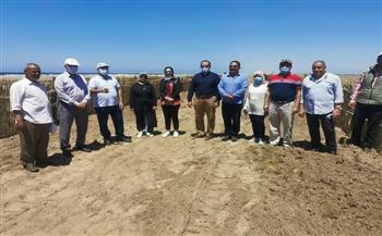 رئيس «حماية الشواطئ» يتفقد حماية المناطق المنخفضة في كفرالشيخ من التغيرات المناخية وارتفاع منسوب البحر  صور