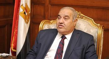 رئيس المحكمة الدستورية: مصر تعيش لحظات الانتقال للجمهورية الجديدة