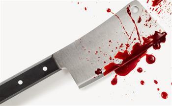 مستخدما «ساطور».. ضبط شاب متهم يقتل 3 من أقاربه وإصابة والدته في المنيا