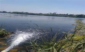إلقاء ملايين من زريعة الأسماك بالبحر الفرعوني بكفر الخضرة بالمنوفية