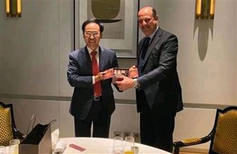 """سفير مصر في سول يلتقي المدير التنفيذي لـ""""هيونداي روتام الكورية"""" لمتابعة نتائج زيارته لمصر"""