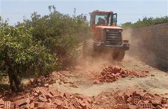 تنفيذ 4 حالات إزالة تعد على الأراضي الزراعية بمجلس قروي شطورة بمركز طهطا