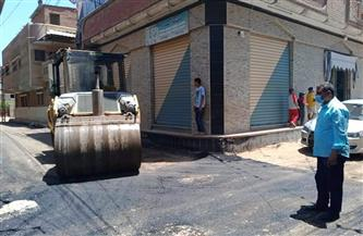 رئيس مركز ومدينة قويسنا يتابع رصف مدخل قرية الشيخ إبراهيم  صور