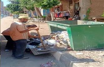 رفع 20 طن قمامة في حملة نظافة بمدينة الباجور بالمنوفية   صور