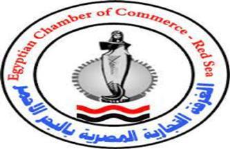 رئيس تجارية البحر الأحمر يستعرض لوفد باكستاني محفزات الاستثمار في مصر