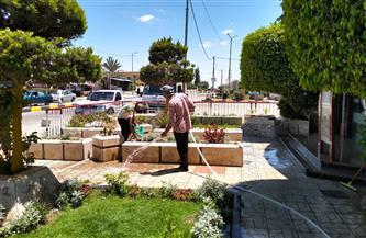 حملة لتجميل المسطحات الخضراء وحدائق برج العرب بالإسكندرية | صور