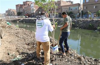 """ضمن مبادرة """"حياة كريمة"""".. «البيئة» تنفذ وحدة بيوجاز بصفط تراب لتدريب المزارعين والشباب"""