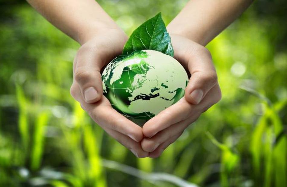 ;العالمية للاقتصاد الأخضر; تناقش تحديات الأمن الغذائي في العالم