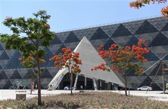 العناني: قاعة الملك توت عنخ آمون من أجمل قاعات العرض في العالم   صور