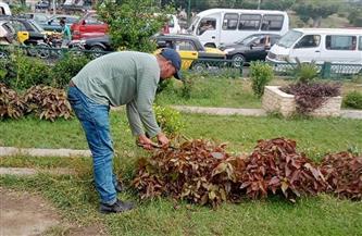 حملة للارتقاء بالحدائق الخضراء بحي المنتزه أول بالإسكندرية