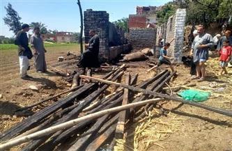نفوق 12 رأس ماشية فى حريق 3 حظائر للمواشي بقرية «مونسة»| صور