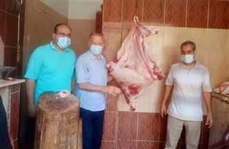 ضبط أدوية بيطرية منتهية الصلاحية وذبح خارج السلخانة في حملة بأجا