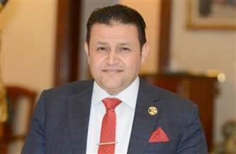 برلماني: مصر أصبحت قوة اقتصادية إقليمية ضخمة بسبب الإصلاح والمشاريع العملاقة