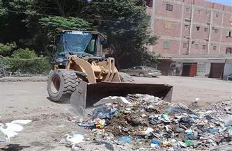 رفع 206 أطنان من القمامة في حملات نظافة متفرقة بقرى مركز شبين الكوم| صور