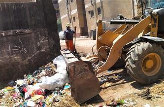رفع 172 طن قمامة وتراكمات ومسح للأتربة من شوارع حي ثاني المحلة
