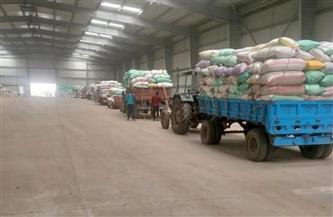 """توريد القمح في بني سويف يسجل زيادة """"18.3%"""" عن المستهدف"""