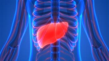 دراسة أمريكية: العلاج بموجات الراديو آمن لمرضى سرطان الكبد