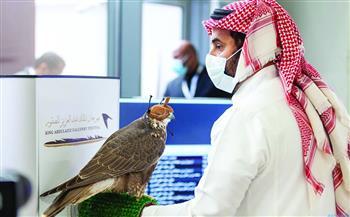 السعودية تستضيف الدورة الأولى للمزاد الدولي لمزارع إنتاج الصقور