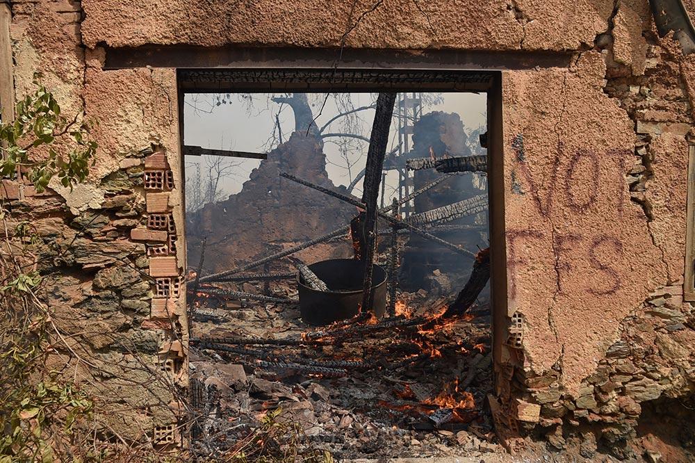 الجزائر  حريقًا في  ولاية و ضحايا كحصيلة أولية