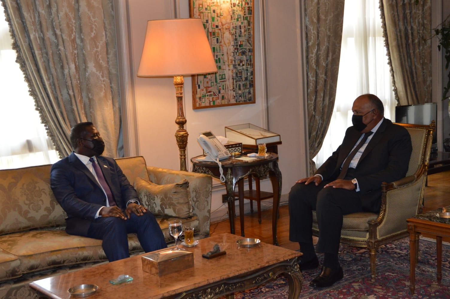 وزير الخارجية تكثيف جهود مكافحة التنظيمات الإرهابية بمنطقة الساحل وإعادة الإعمار والتنمية | صور