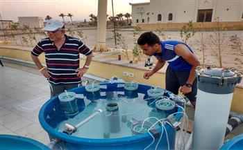 محمود-حنفي-خبير-علوم-البحار-دعم-الصيادين-أساس-لاستعادة-الثروة-السمكية-والشعاب-المرجانية- -حوار